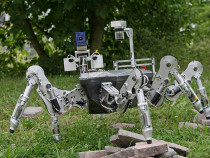 Nature-Inspired-Robots