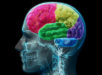 Video Games and Your Brain